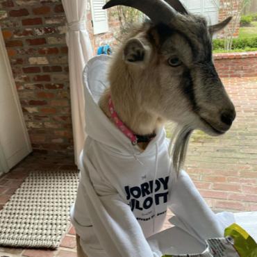 Henry The Goat
